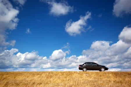 Black car on yellow meadow. Stock Photo - 17324390