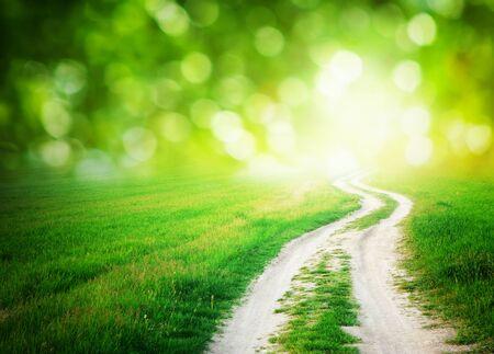 paisajes: Lane en la pradera y el cielo azul profundo. Dise�o de la naturaleza. Foto de archivo