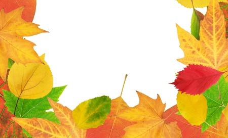 autmn: Autmn leafs frame. Element of design. Stock Photo
