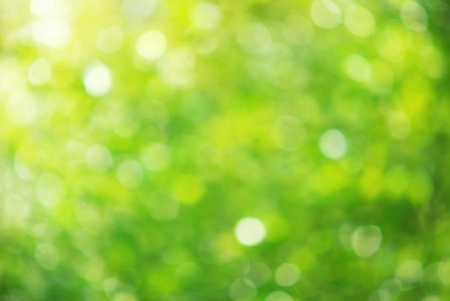 green background: Bokeh background. Elemnt of design. Stock Photo