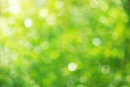 green: Nền Bokeh. Elemnt của thiết kế. Kho ảnh