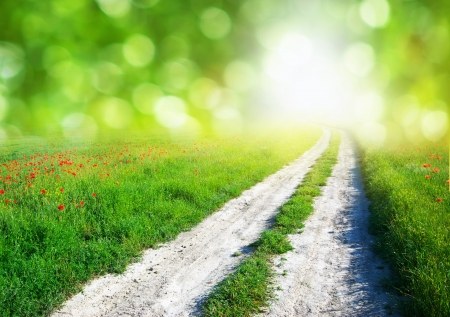 Lane in meadow and deep blue sky. Nature design.  Stock Photo