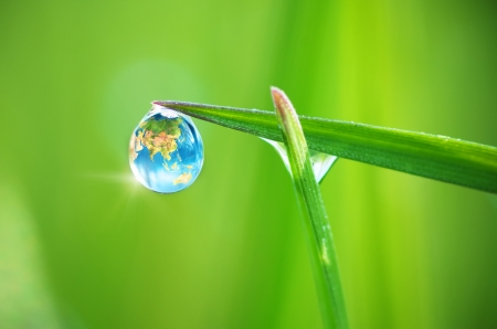 Planet Earth in dew, macro on leaf. Conceptual design. Elements of this image furnished by NASA.