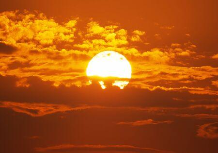 heat wave: Big Sun on sunset. Nature composition.