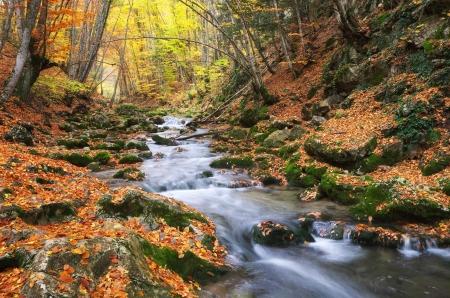 Herfst landschap. Samenstelling van de natuur. Rivier in de canyon.