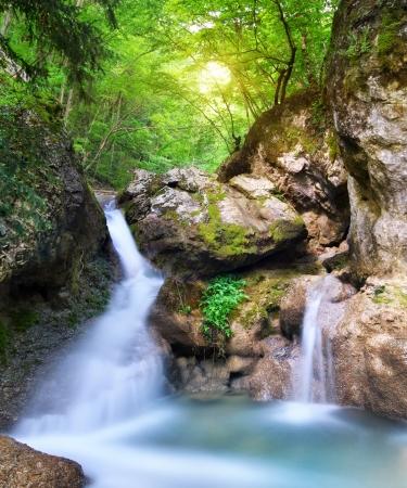 flux de petit ruisseau du printemps. Composition de la nature.