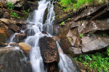 rill: Spring rill flow  Nature composition