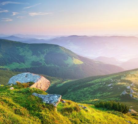 Paysage de montagne. Composition de la nature.