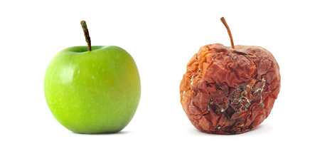 rotten fruit: Green and rotten. Isolated odject. Element of design. Stock Photo