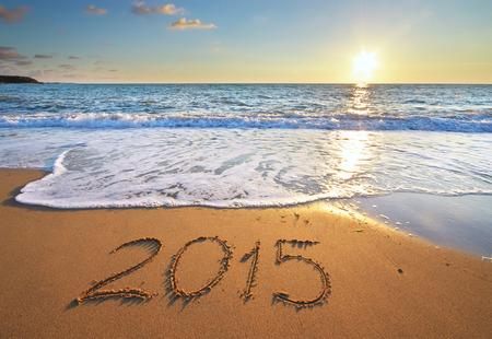 playas tropicales: 2015 a�os en la orilla del mar. Elemento de dise�o.