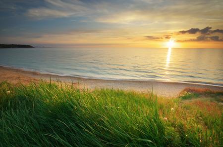 sky  sea: Composizione del tramonto. Cielo, mare ed erba verde.