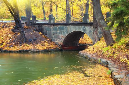 bridge in nature: Autumn landscape. Bridge in park. Composition of nature.