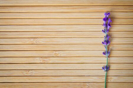 wooden surface: Lavender on wooden texture. Element of design.