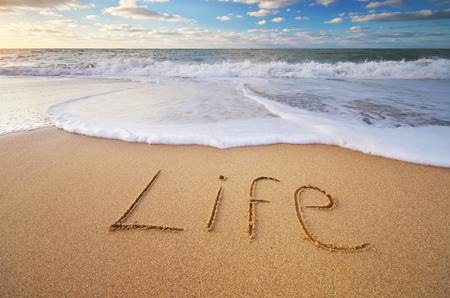 Life word on the sea sand. Conceptual nature design.
