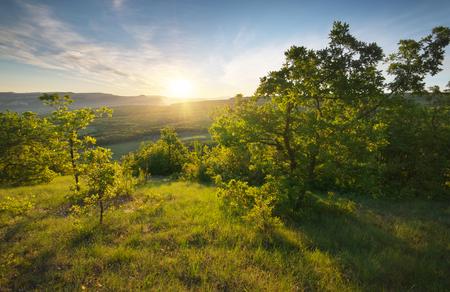 Mountain sunrise landscape. Sun and tree. Stock Photo