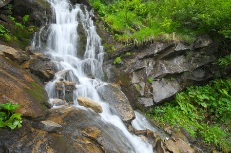 Spring rill flow in mountain. Nature composition.