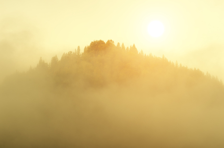 Fog and mountain morning landscape. Aerial nature composition.
