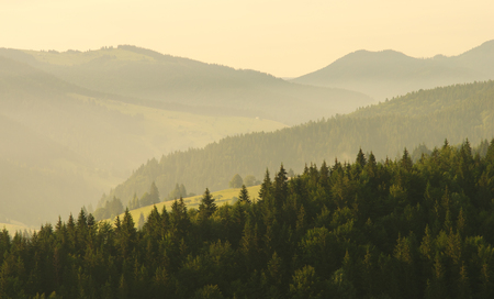 Mountain aerial morning landscape. Composition of nature. Stock Photo