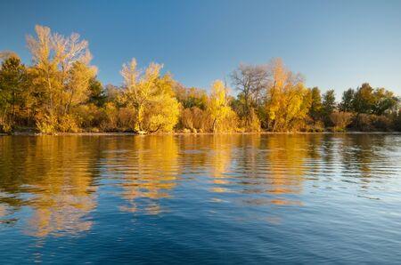 Autumn forest and lake reflection. Autumn landscape. Stok Fotoğraf