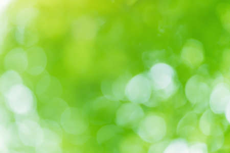 Bokeh foliage background. Elemnt of design. Banque d'images - 152568626