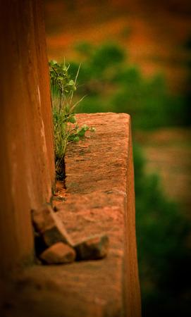edge: life on the edge