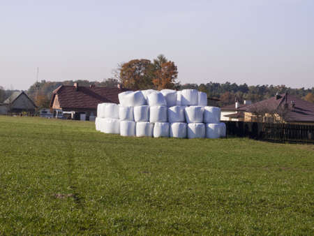 straw bales stored in a plastic bag in the meadow as a background Stock Photo - 15963105