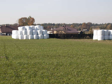 straw bales stored in a plastic bag in the meadow as a background Stock Photo - 15963104