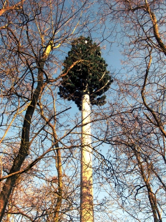 screened: telecommunications antenna on the tree look is located among the trees in the area Tigery south of Paris, France Stock Photo