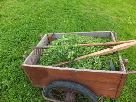 a two wheeled vehicle: old truck with mown grass with a scythe, rake and whetstone on a green meadow Stock Photo