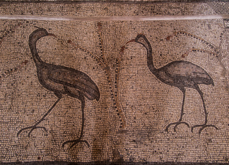 multiplication: Ancient mosaic. Church of the Multiplication of the Loaves and the Fishes, Tabgha, Israel Editorial