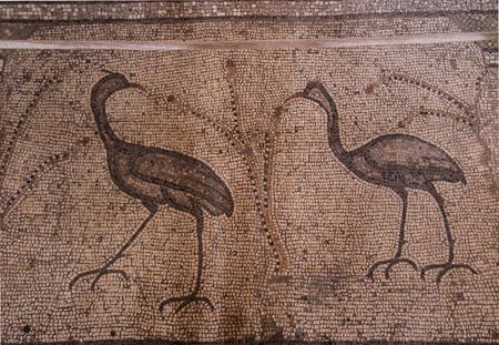 multiplicacion: Mosaico antiguo. Iglesia de la Multiplicación de los Panes y los Peces, Tabgha, Israel Editorial