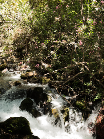 banias: Falls stones park recreation area. Spring of Hermon river. Nature Reserve in the north of Israel Stock Photo