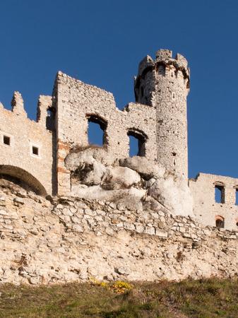 ogrodzieniec: The Ruins of Ogrodzieniec castle - Poland Editorial