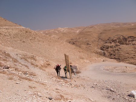 judah: Farewell, space tourists heading out to the desert of Judea in Israel