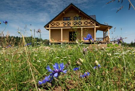 wooden house surrounded by colorful flowers wild