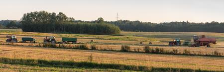 field work: Harvest, autumn field work in Poland