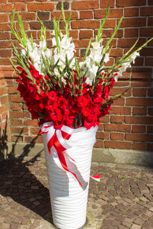 sash: white and red flowers in a vase with a sash in the colors of the national Polish Stock Photo
