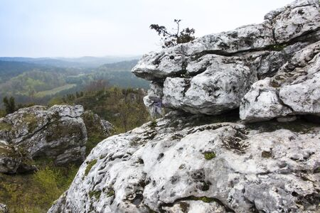 Fragment of limestone cliffs in Cracow Czestochowa highlands in Polesice