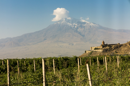 View of the Khor Virap monastery and Mount Ararat. In the foreground grape plantations