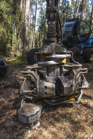 forestry harvester during a stoppage among trees in the forest Foto de archivo