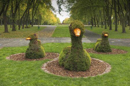 Kaczki na trawniku z drutu i posadzonych roślin. Park Śląski w Chorzowie, Polska
