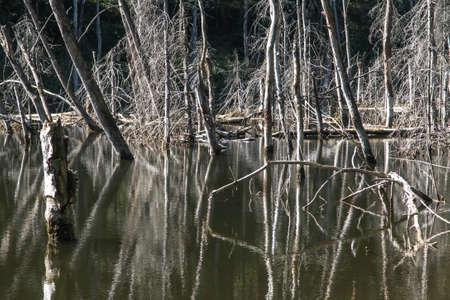 "ponds at the site of the flooded iron mine ""Pasieki"" in Miasteczko Slaskie in Silesia, Poland Banque d'images"
