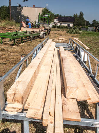 Mobile sawing equipment for logs in the open air. Rural landscape on a sunny day. Mobility and work speed