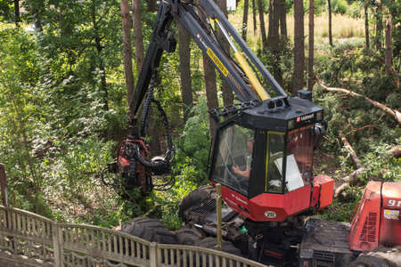 Kalety, Poland, August 1, 2020: Forestry harvester during a job among trees in the forest 新聞圖片