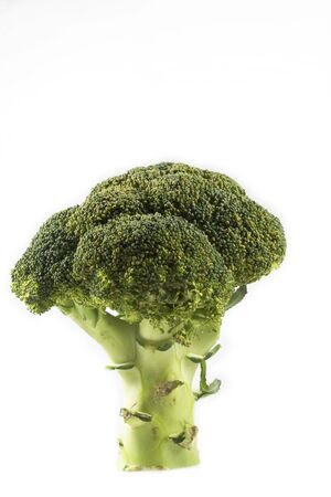 Head of broccoli over white