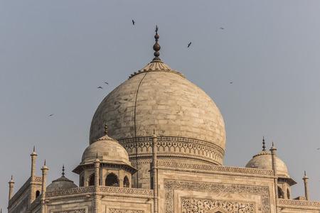 islamic wonderful: November 02, 2014: The roof of the Taj Mahal in Agra, India Editorial