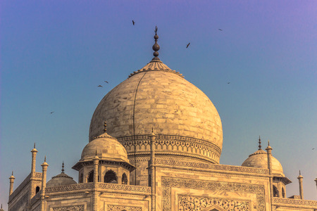 a wonderful world: November 02, 2014: The roof of the Taj Mahal in Agra, India Editorial