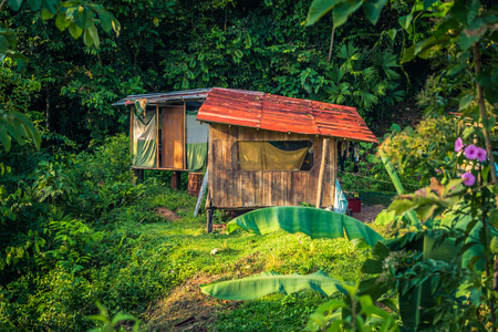 Small lodge in the Amazon rainforest of Manu National Park, Peru