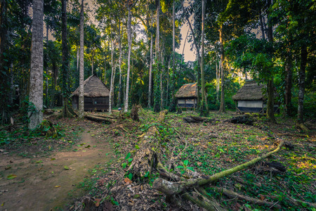 Manu National Park, Peru - August 07, 2017: Jungle lodges of Cocha Otorongo in the Amazon rainforest of Manu National Park, Peru
