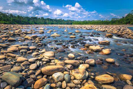Manu National Park, Peru - August 10, 2017: Landscape of the Amazon rainforest of Manu National Park, Peru